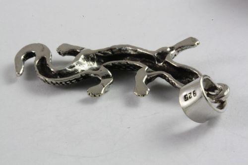 salamander2-2.jpg