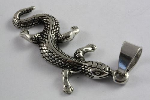 salamander2-3.jpg